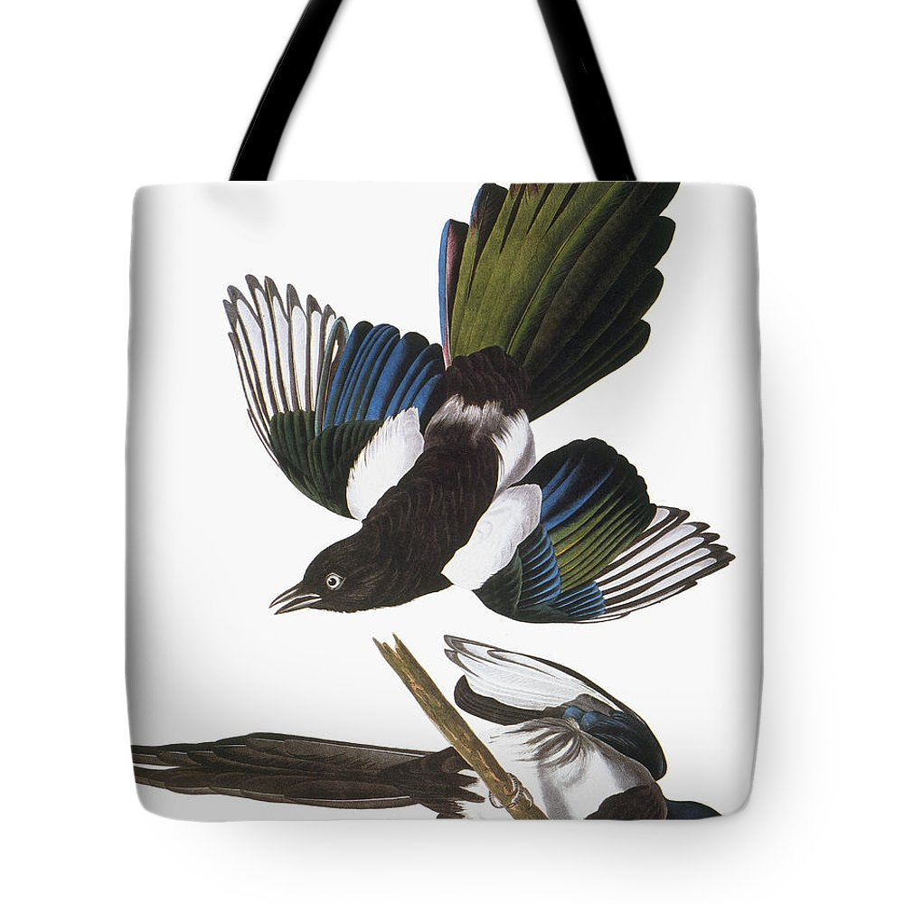 1838 Tote Bag featuring the photograph Audubon: Magpie by Granger