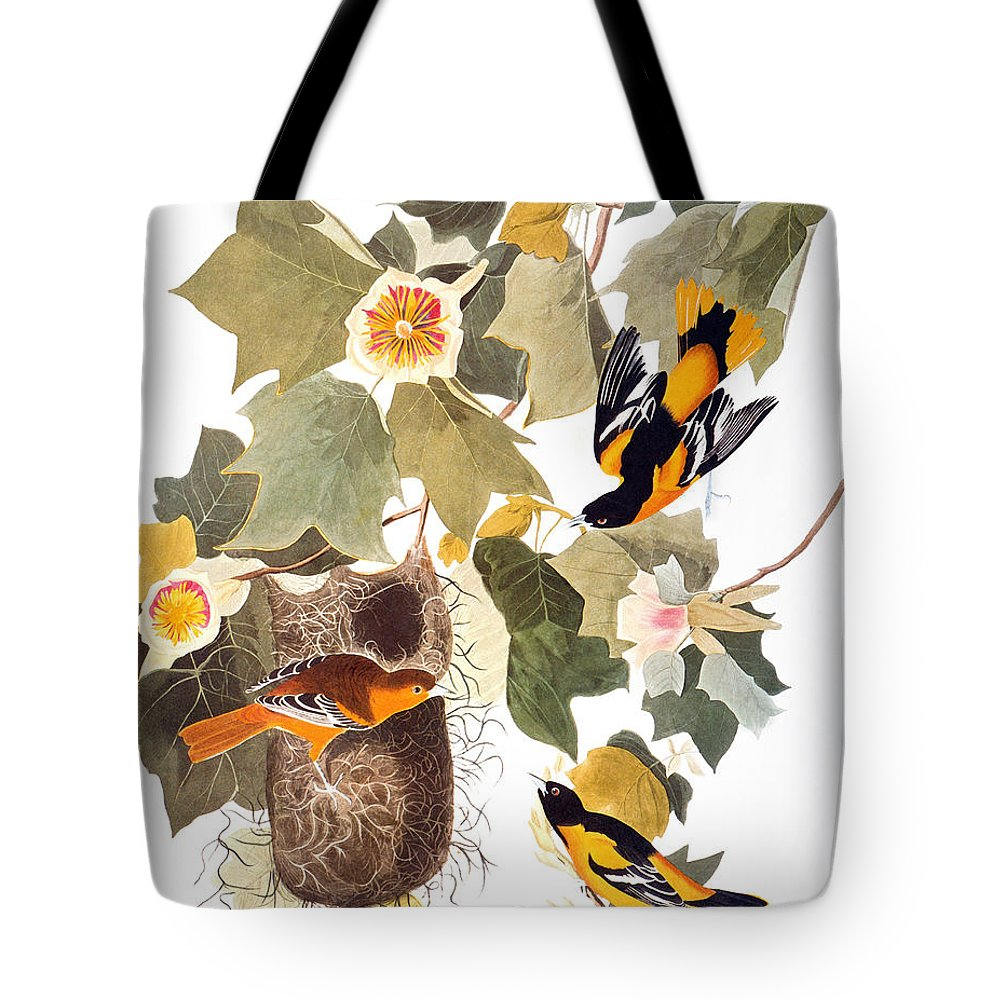 1838 Tote Bag featuring the photograph Audubon: Oriole by Granger