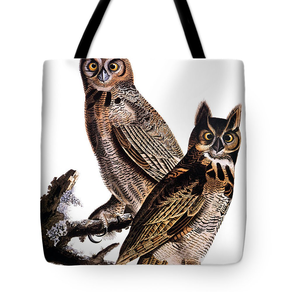19th Century Tote Bag featuring the photograph Audubon: Owl, (1827-1838) by Granger