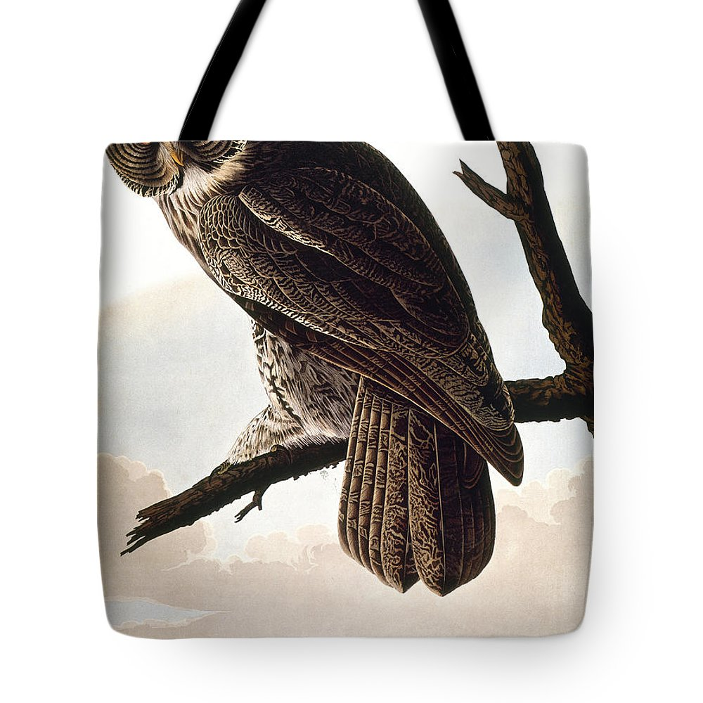 1838 Tote Bag featuring the photograph Audubon Owl by John James Audubon