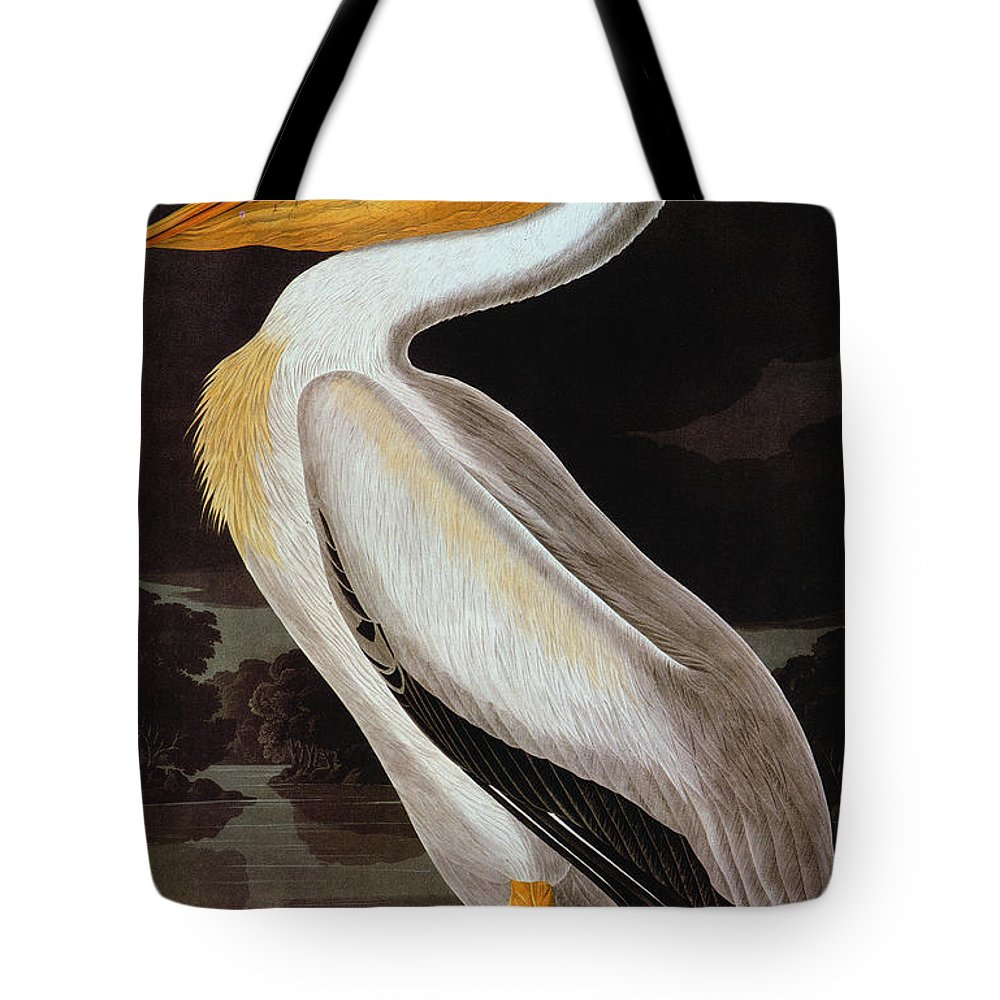 19th Century Tote Bag featuring the photograph Audubon: Pelican by Granger