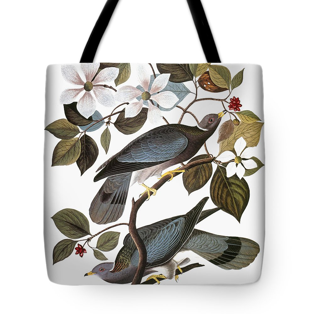 1838 Tote Bag featuring the photograph Audubon: Pigeon by Granger
