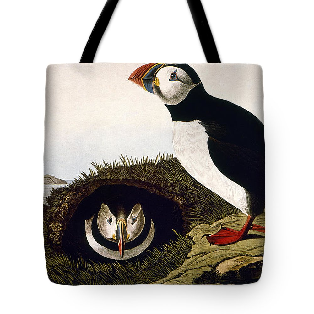 1827 Tote Bag featuring the photograph Audubon: Puffin, (1827-38) by Granger