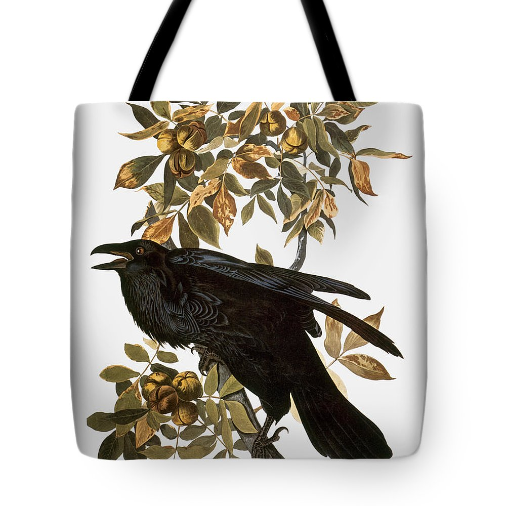 1838 Tote Bag featuring the photograph Audubon: Raven by Granger
