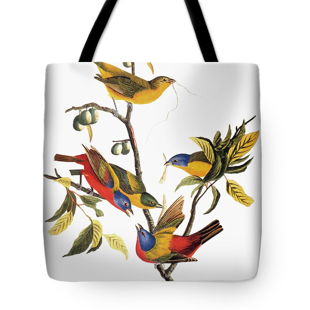 1838 Tote Bag featuring the photograph Audubon: Sparrows by Granger