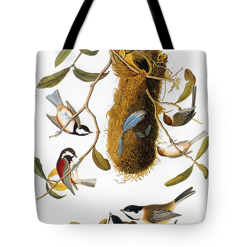 1838 Tote Bag featuring the photograph Audubon: Titmouse by Granger