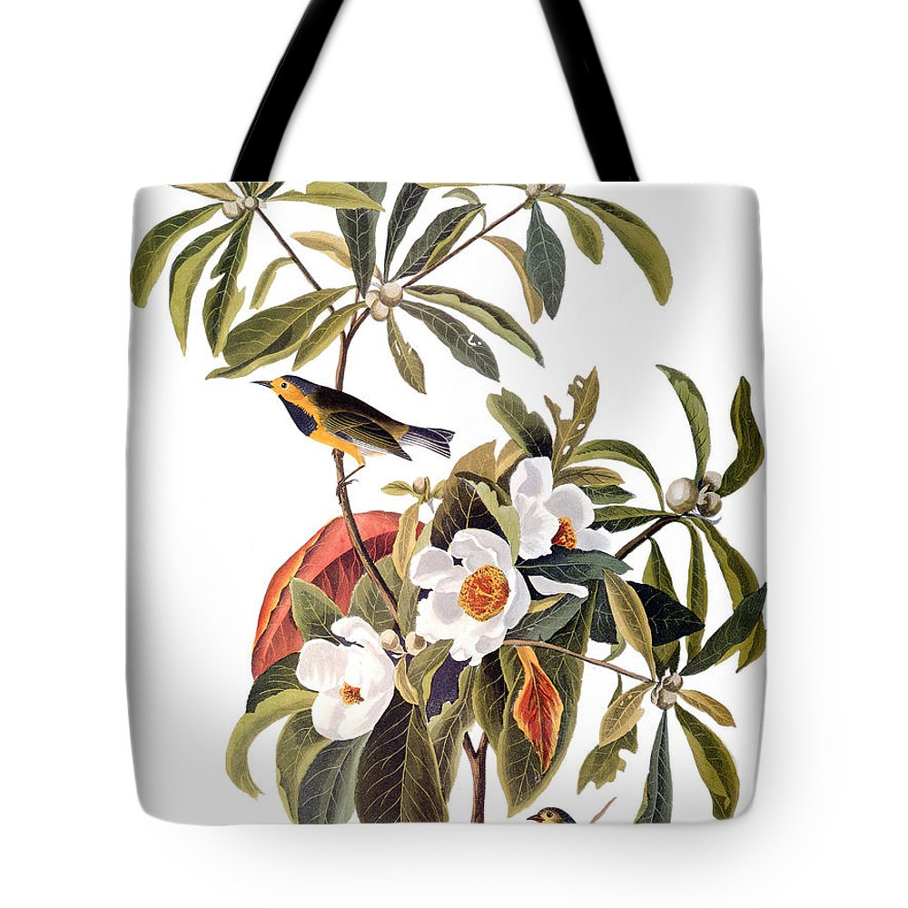 1827 Tote Bag featuring the photograph Audubon: Warbler, 1827-38 by Granger