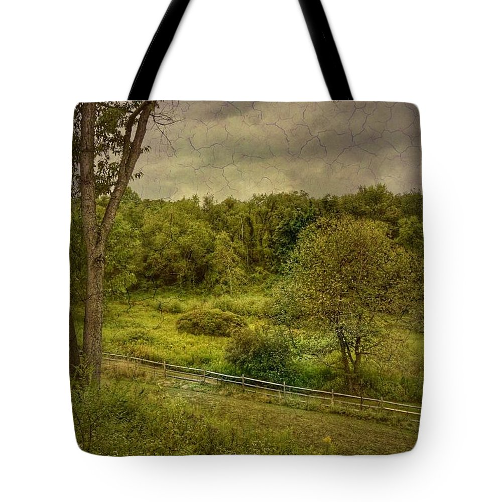 Beechwood Farms Nature Reserve Tote Bag featuring the photograph August Evening by Shelley Smith