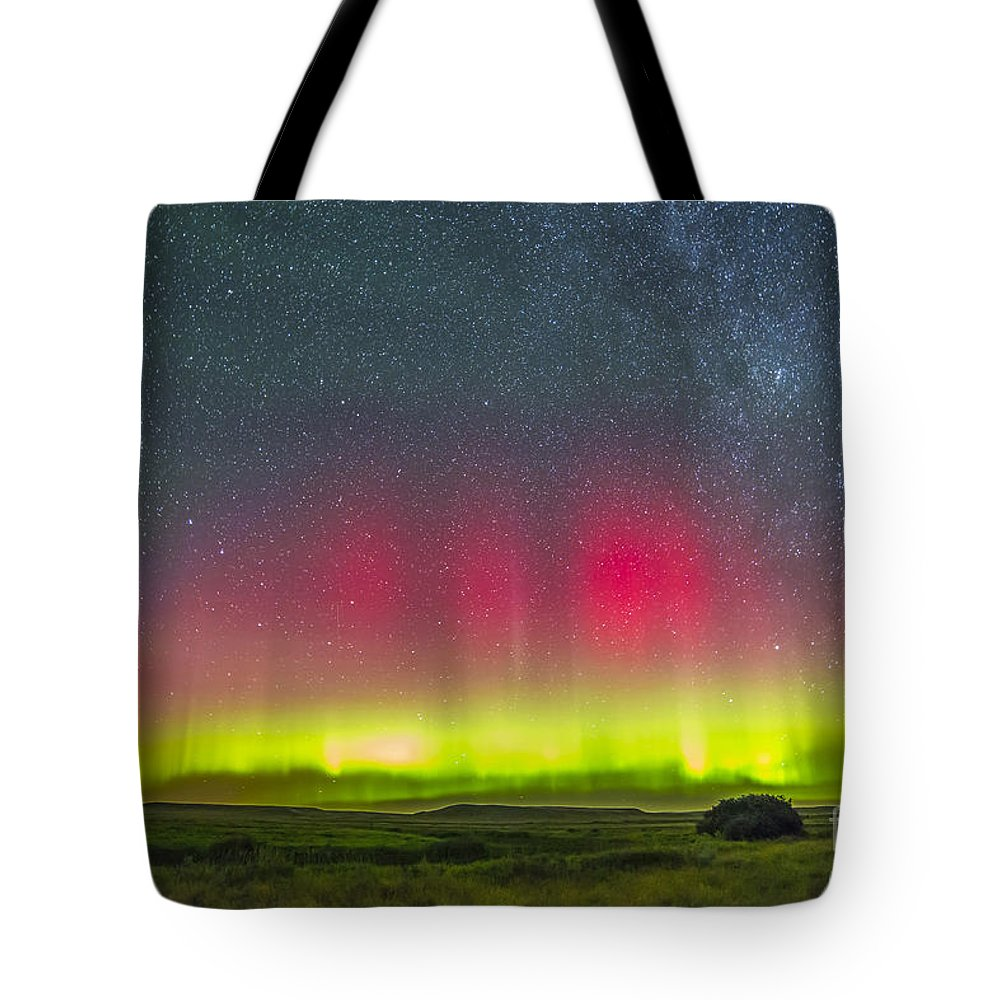 Aurora Tote Bag featuring the photograph Aurora Borealis Above Grasslands by Alan Dyer