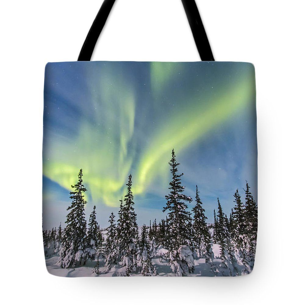 Aurora Tote Bag featuring the photograph Aurora Borealis Over The Trees by Alan Dyer