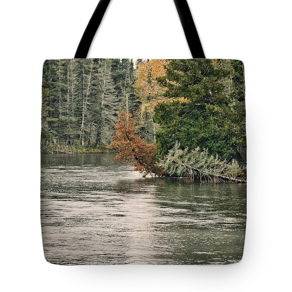 Ausable Tote Bag featuring the photograph Ausable River 9899 by Michael Peychich