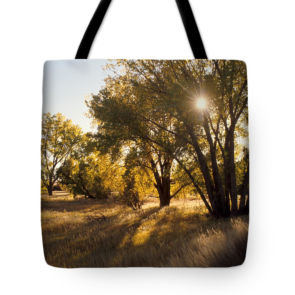Fall Tote Bag featuring the photograph Autum Sunburst by Jerry McElroy