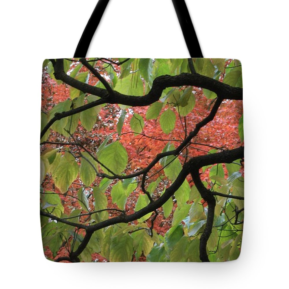 Fall Tote Bag featuring the photograph Autumn 7 by Carol Groenen