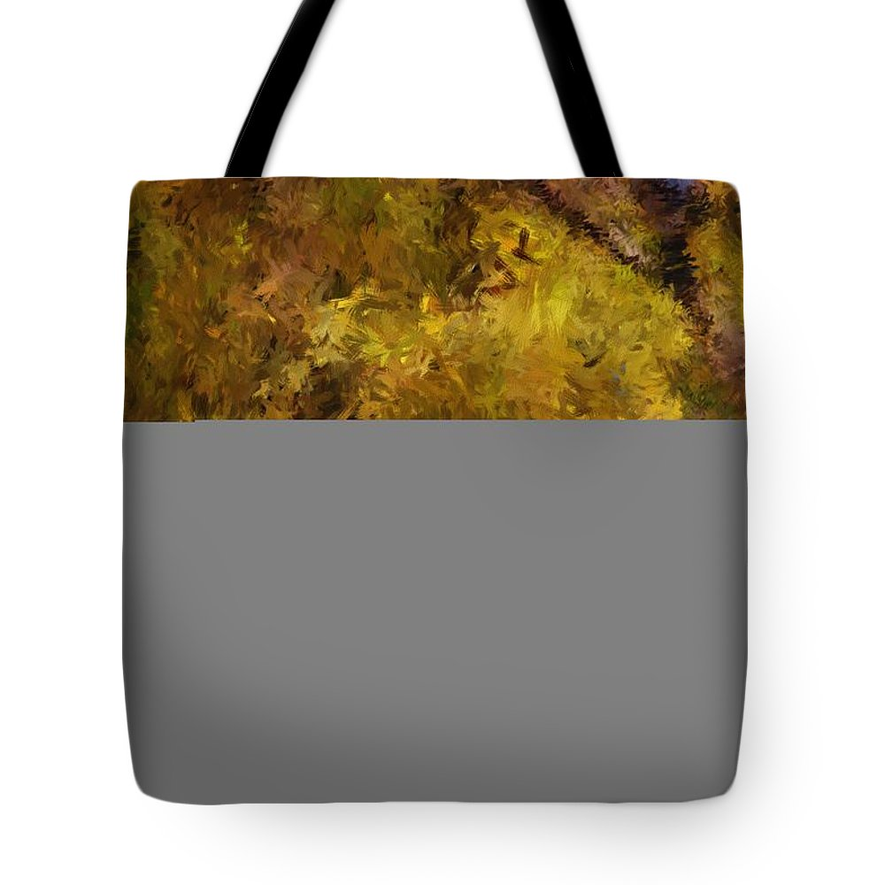 Abstract Digital Painting Tote Bag featuring the digital art Autumn Abstract by David Lane