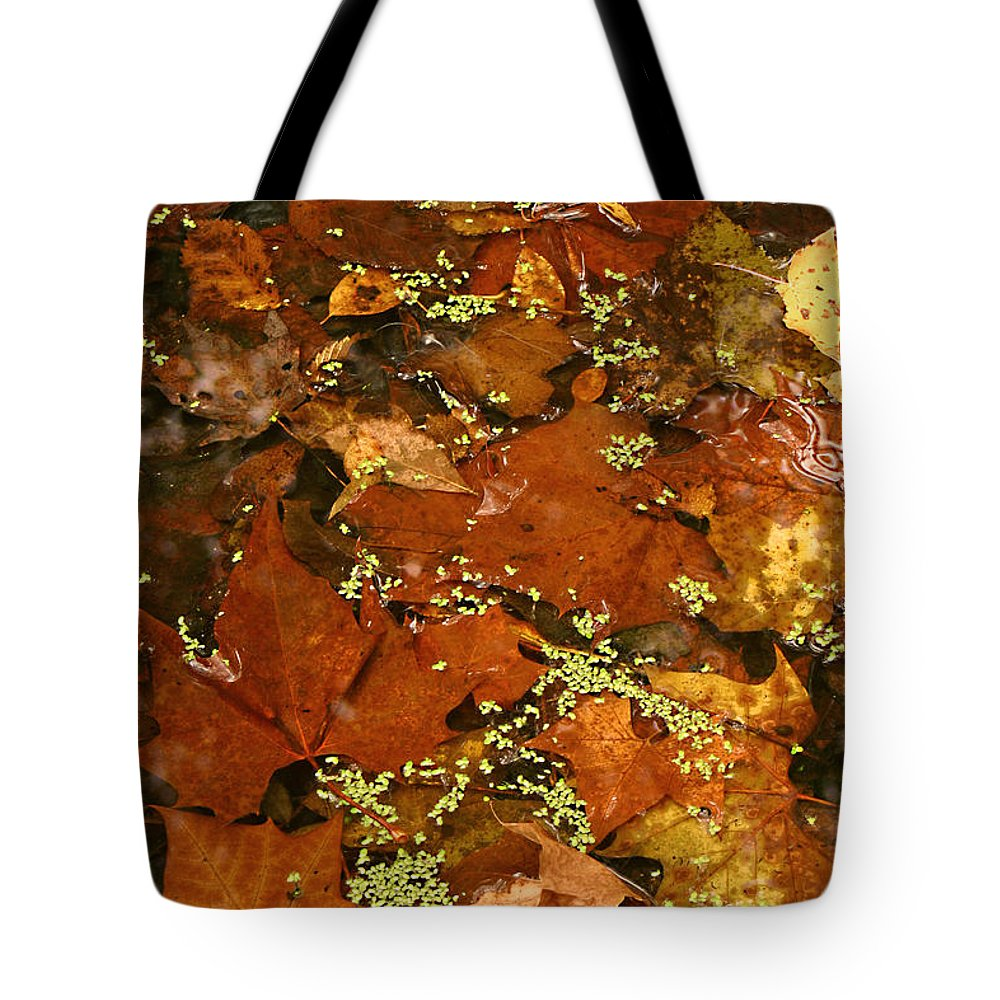 Autumn Fall Leaves Leaf Orange Green Water Maple Photograph Photography Tote Bag featuring the photograph Autumn Abstract by Shari Jardina