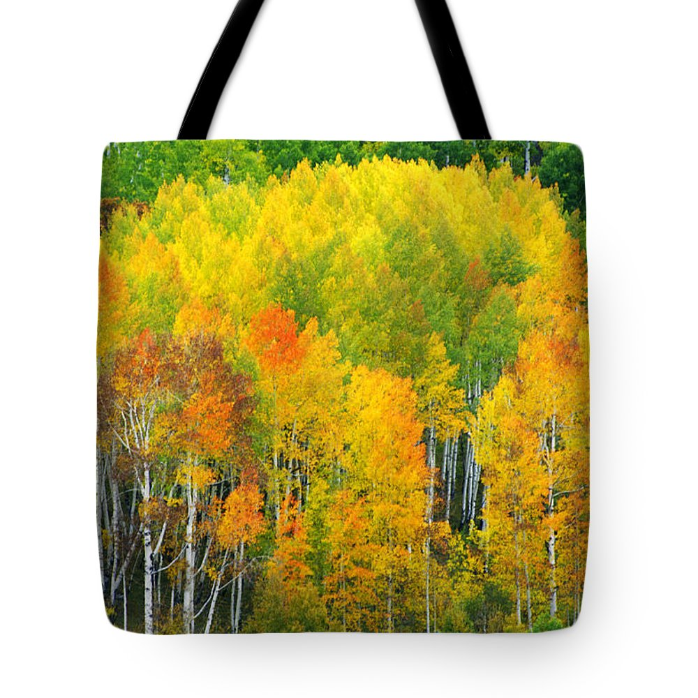 Horizontal Tote Bag featuring the photograph Autumn Aspens by Eggers Photography