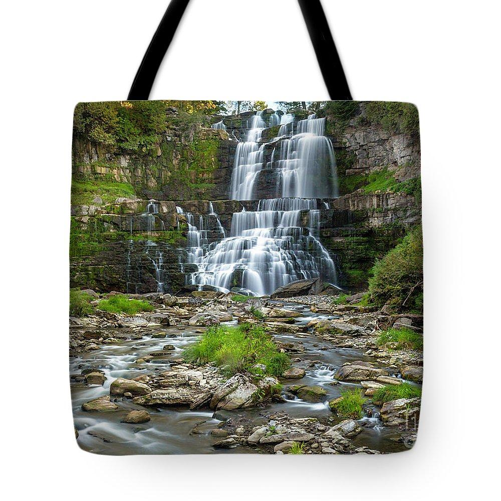 New York Tote Bag featuring the photograph Autumn At Chittenango Falls by Karen Jorstad