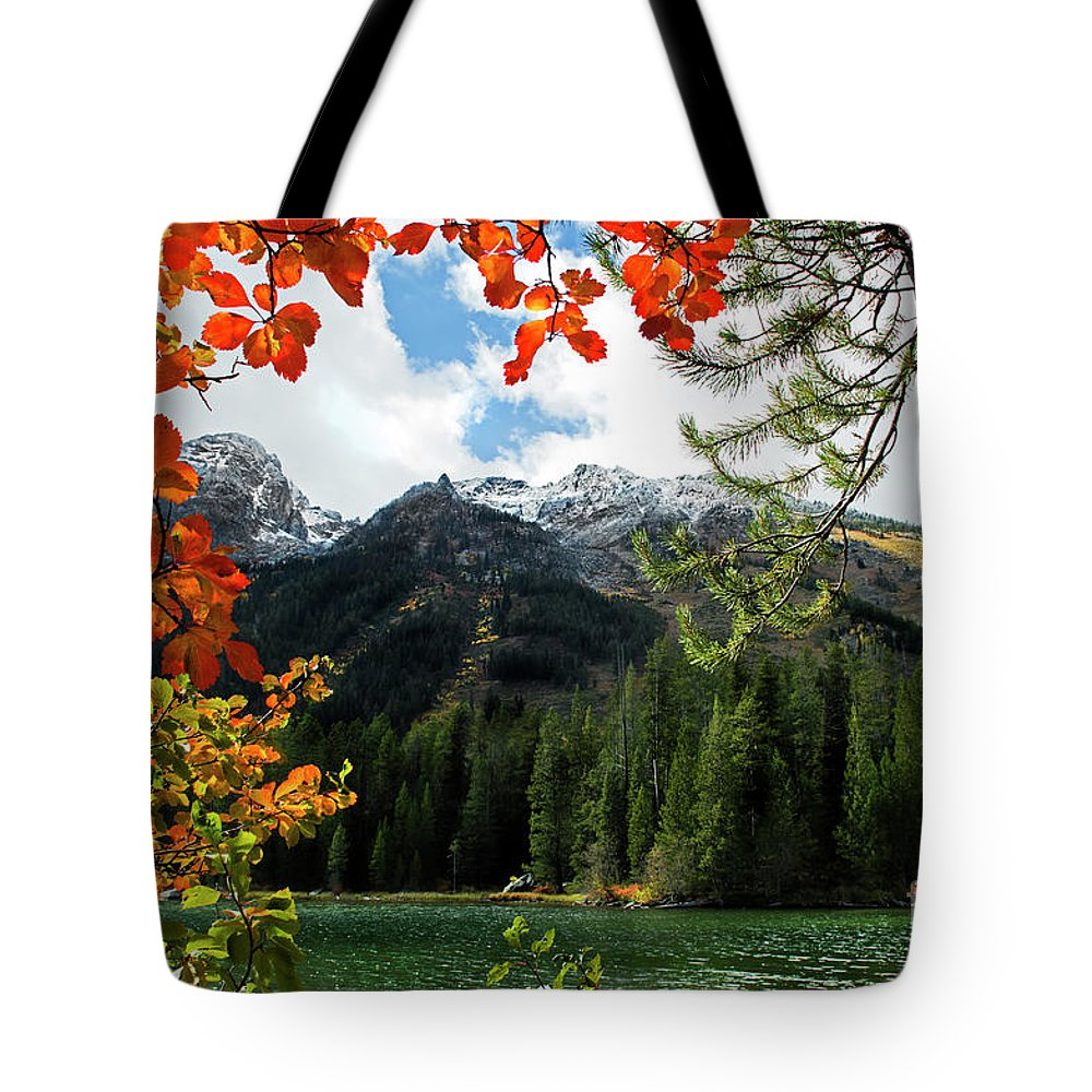String Lake Tote Bag featuring the photograph Autumn At String Lake by Wildlife Fine Art