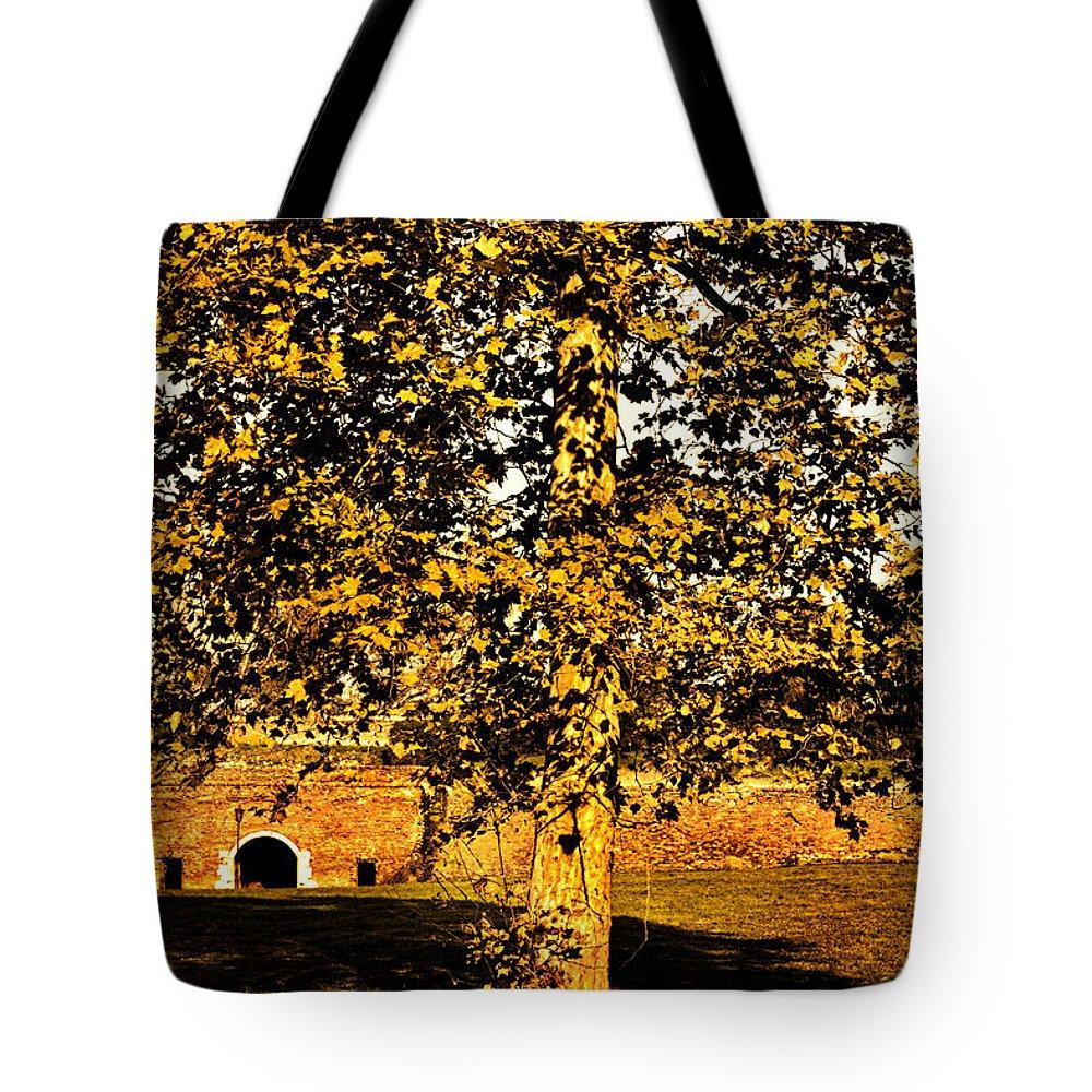 Light Tote Bag featuring the photograph Autumn Boredom by Milan Karadzic