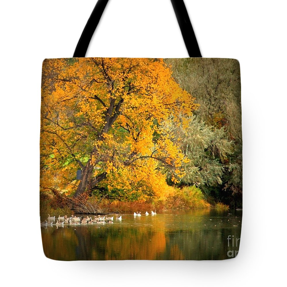Fall Tote Bag featuring the photograph Autumn Calm by Carol Groenen