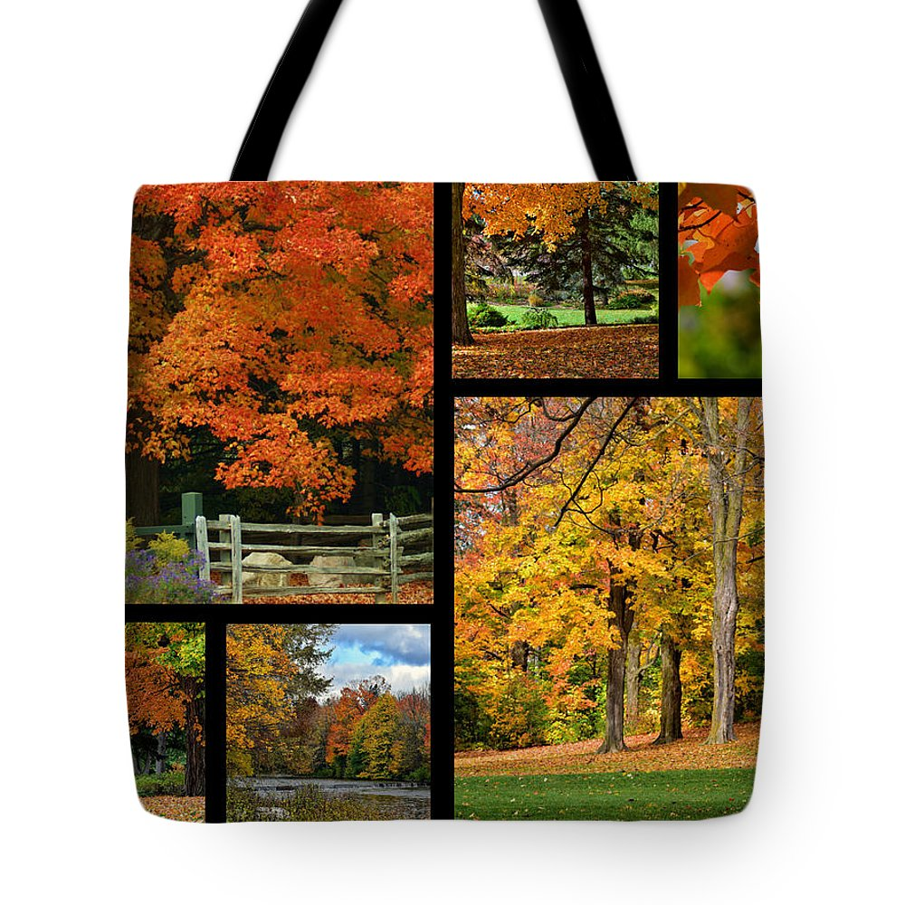 Autumn Tote Bag featuring the photograph Autumn Collage by Maria Keady