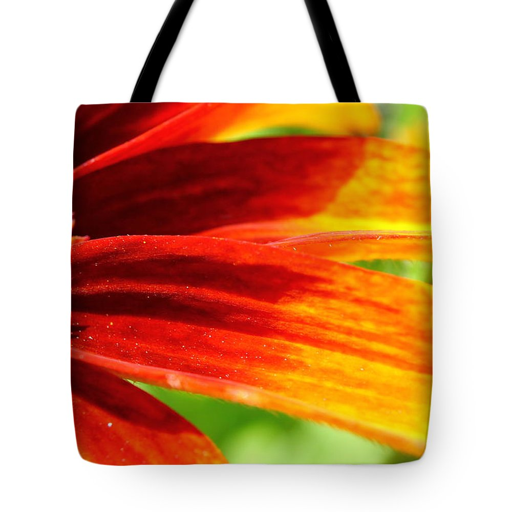 Daisy Tote Bag featuring the photograph Autumn Colors Rudbeckia by Tammy Doherty