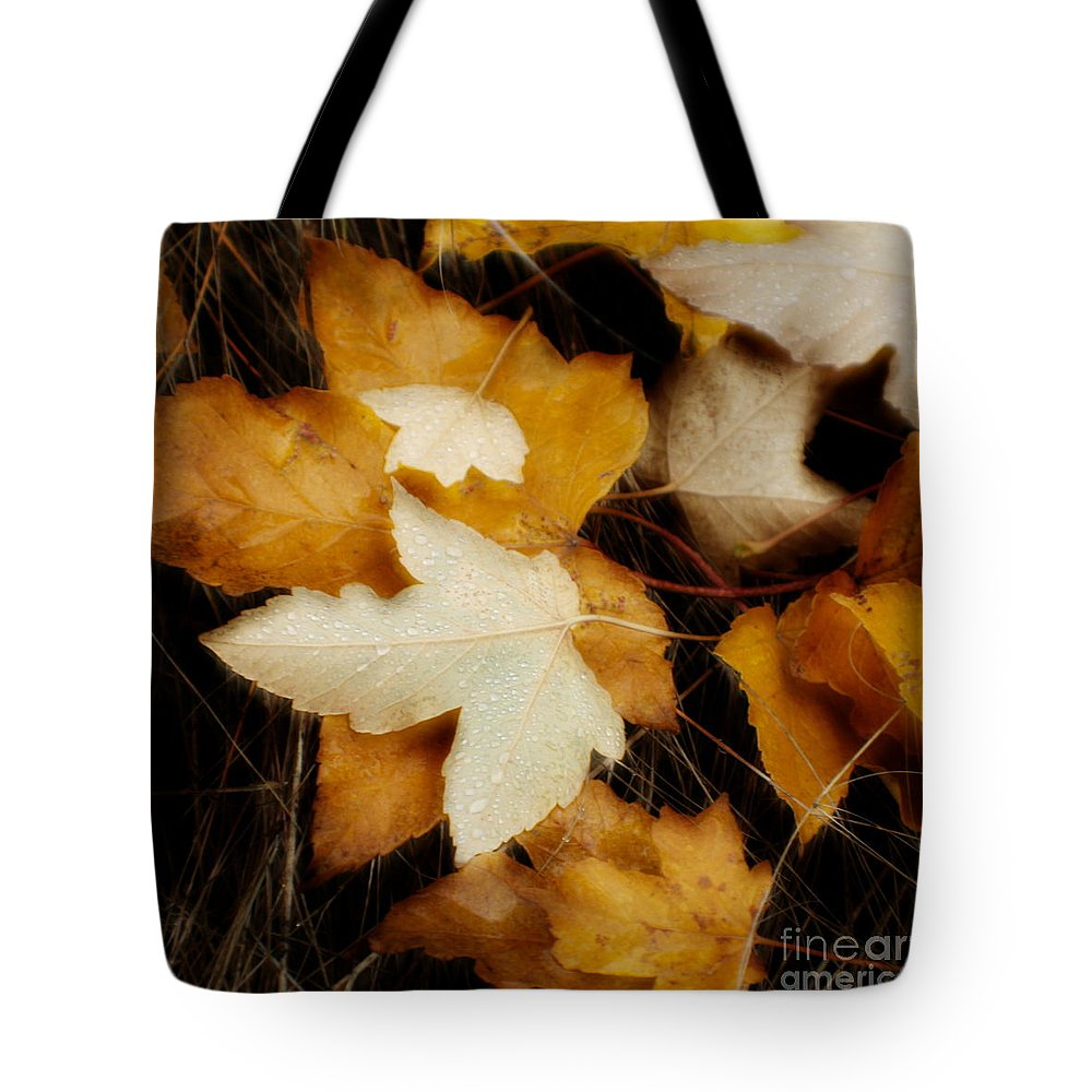Leaf Tote Bag featuring the photograph Autumn Dew by Idaho Scenic Images Linda Lantzy