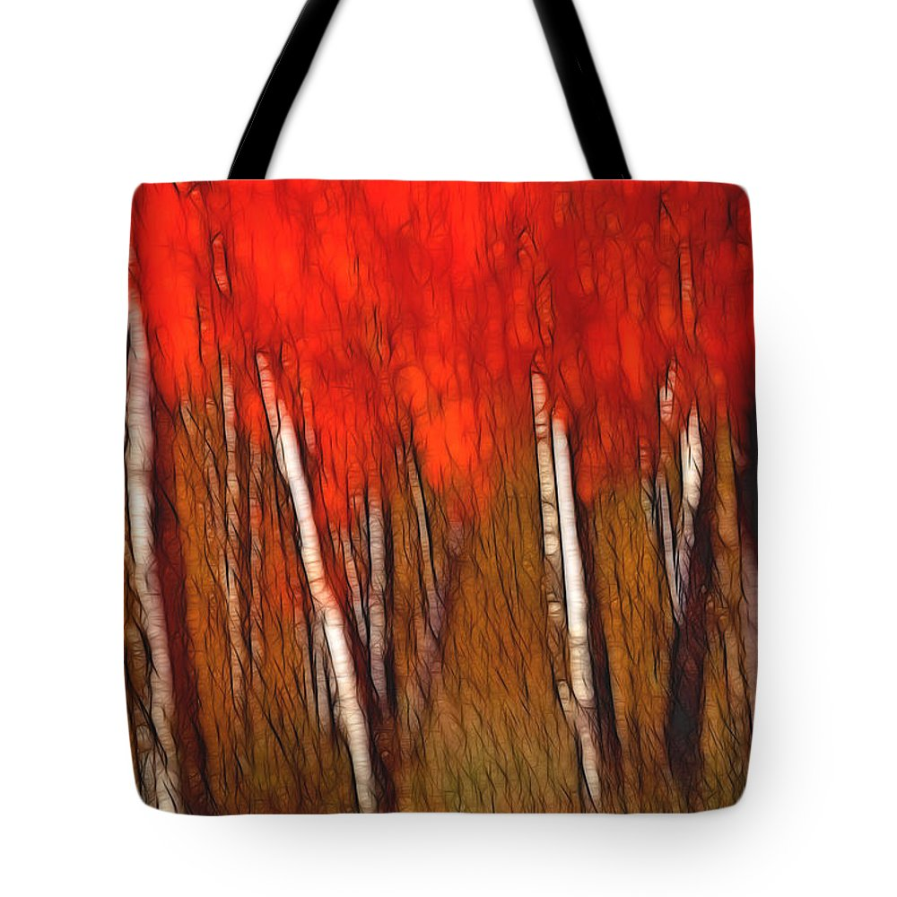 Trees Tote Bag featuring the photograph Autumn Fire by Bill Morgenstern