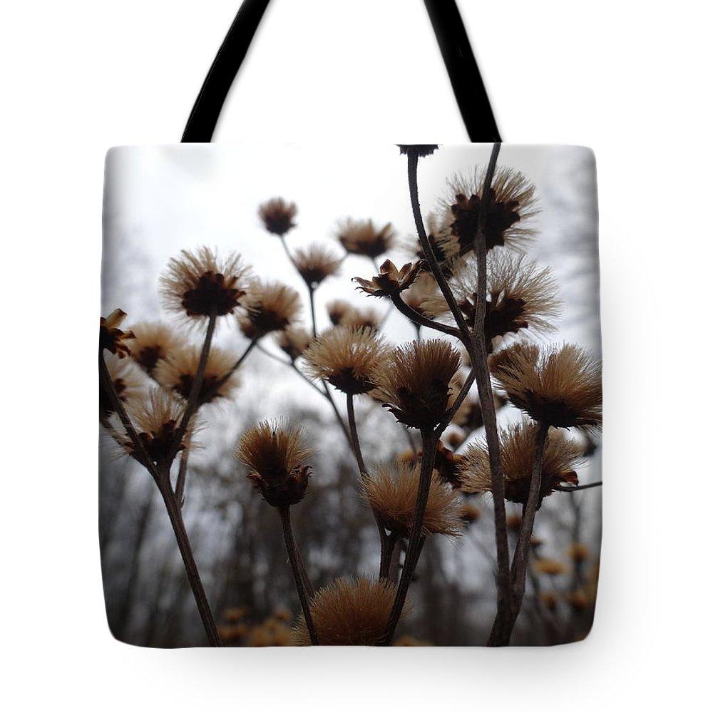 Autumn Tote Bag featuring the photograph Autumn Flowers by Amanda Balough