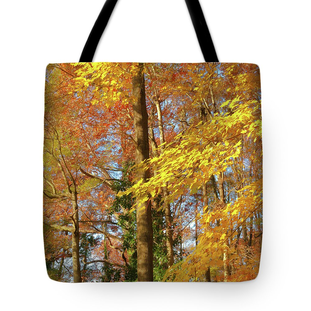 Autumn Gold Tote Bag featuring the photograph Autumn Gold by Ola Allen