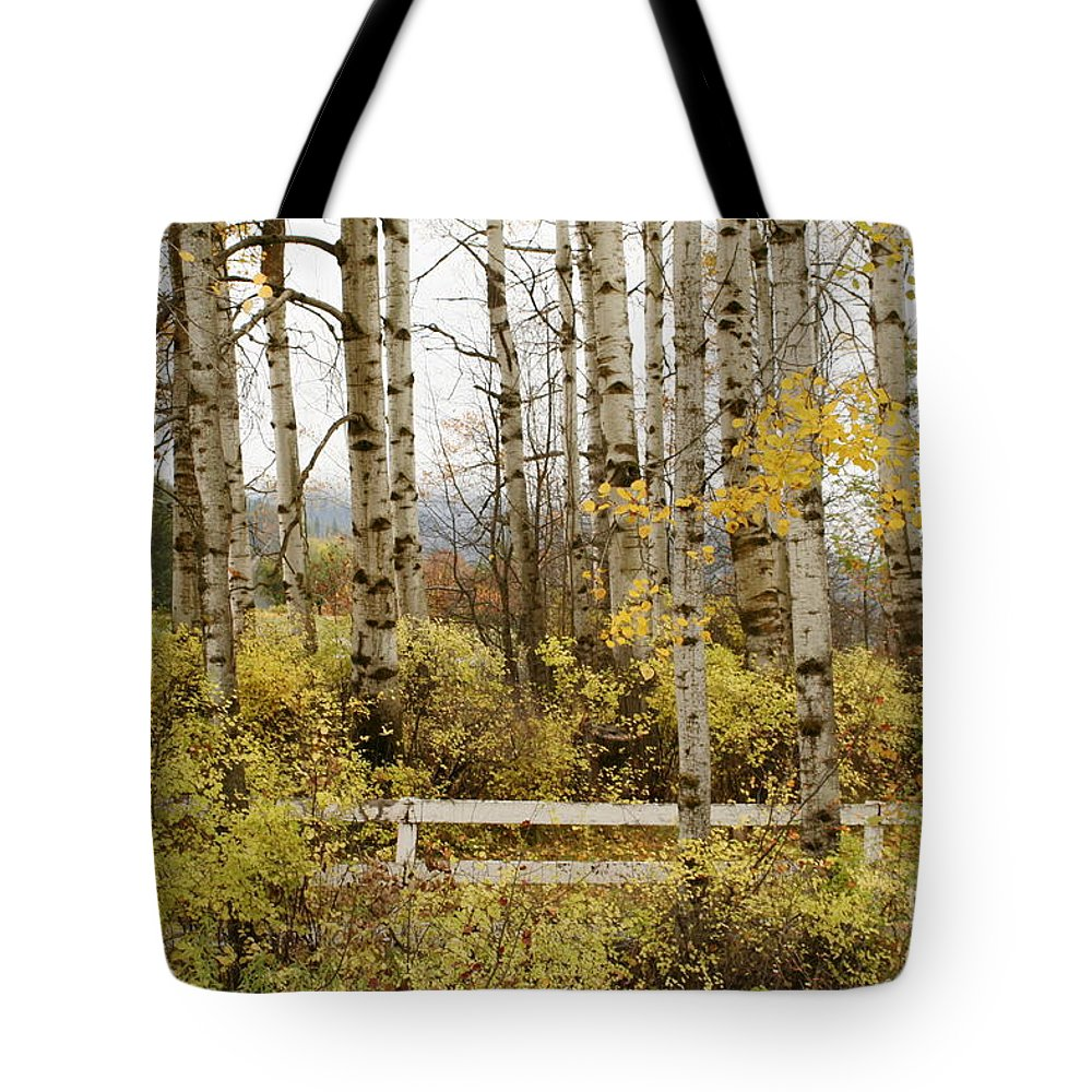 Grove Tote Bag featuring the photograph Autumn Grove by Idaho Scenic Images Linda Lantzy