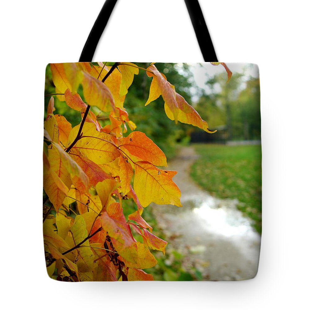 Tote Bag featuring the photograph Autumn In Ellenberger by Kitrina Arbuckle