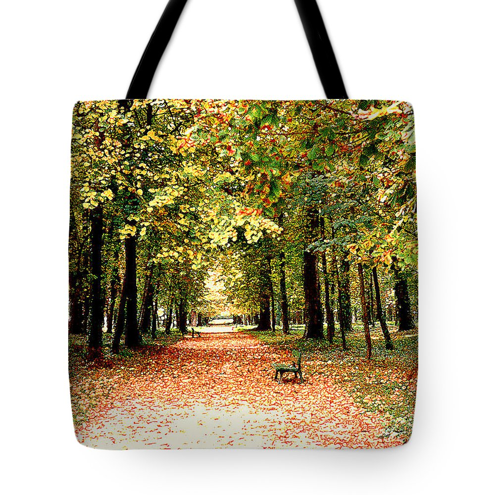 Autumn Tote Bag featuring the photograph Autumn In The Park by Nancy Mueller