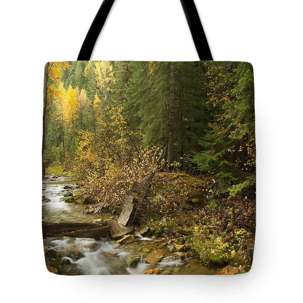 Idaho Tote Bag featuring the photograph Autumn In The St Joe by Idaho Scenic Images Linda Lantzy