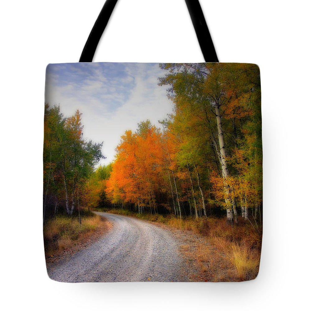 Fall Tote Bag featuring the photograph Autumn Lane by Winston Rockwell