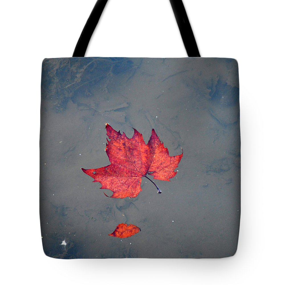 Leaves Tote Bag featuring the photograph Autumn Leaf by Bill Cannon