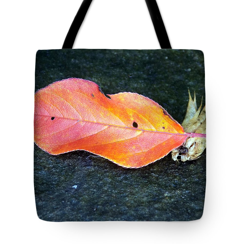Macro Tote Bag featuring the photograph Autumn Leaf In August by William Tasker