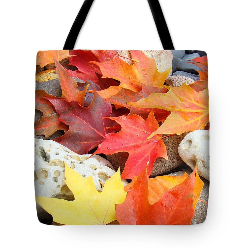 Autumn Leaves Art Print Coastal Fossil Rocks Baslee Troutman Tote Bag