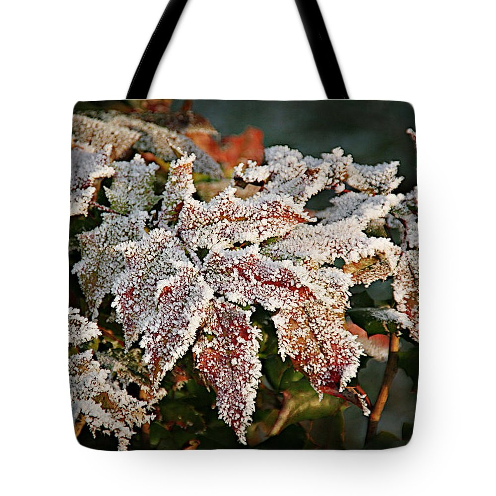 Fall Tote Bag featuring the photograph Autumn Leaves In A Frozen Winter World by Christine Till