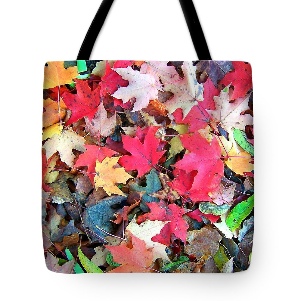 Fall Tote Bag featuring the photograph Autumn Leaves by Mitch Cat