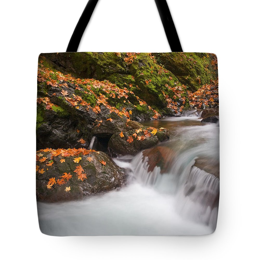 Autumn Tote Bag featuring the photograph Autumn Litter by Mike Dawson