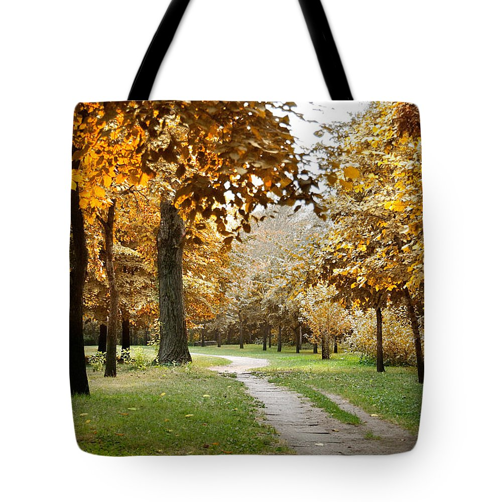 Fall Tote Bag featuring the photograph Autumn by Masha Batkova