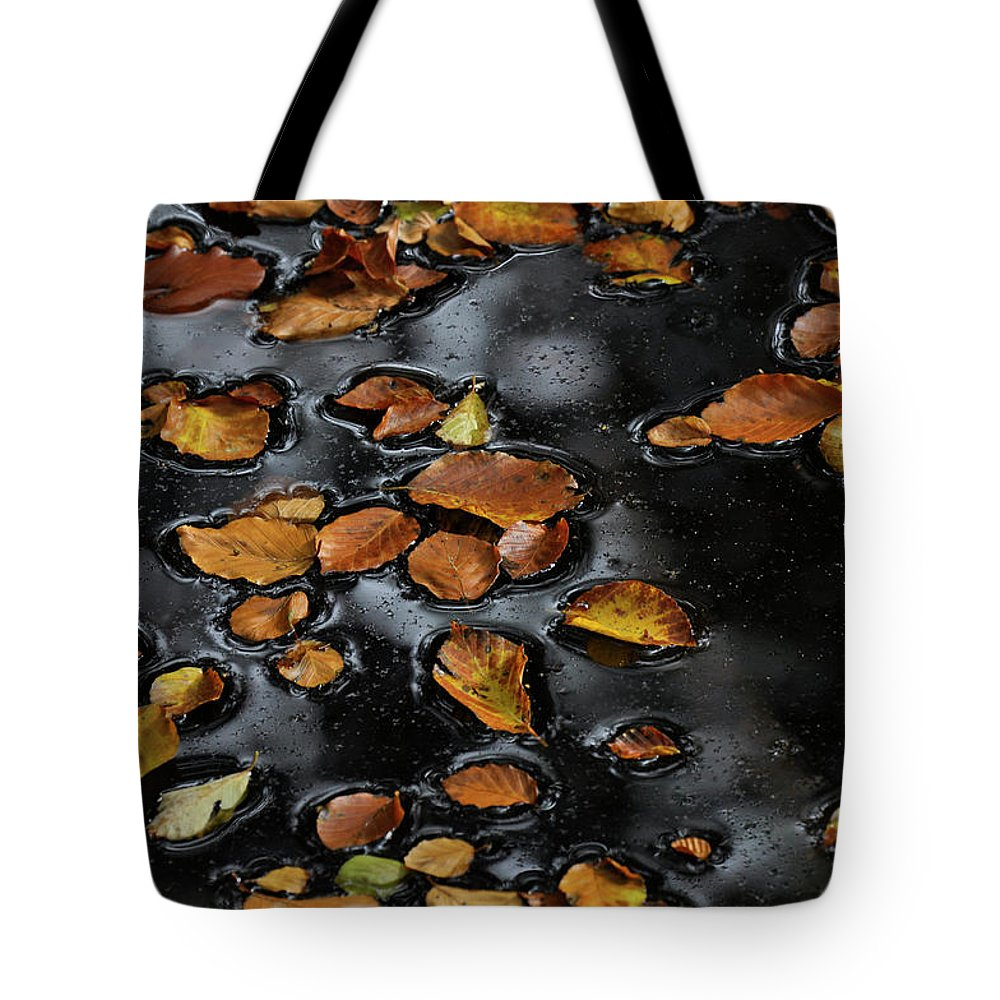 Autumn Tote Bag featuring the photograph Autumn by Michael Mogensen