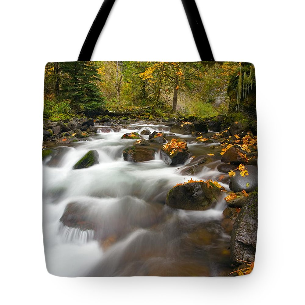 Stream Tote Bag featuring the photograph Autumn Passages by Mike Dawson