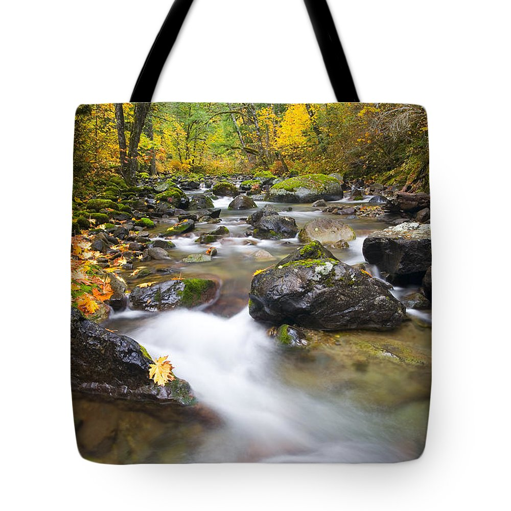 Fall Tote Bag featuring the photograph Autumn Passing by Mike Dawson