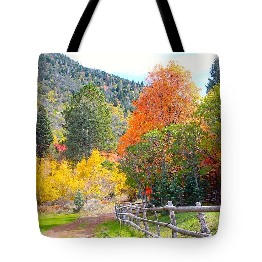 Autumn Tote Bag featuring the photograph Autumn Path by Cordelia Ford