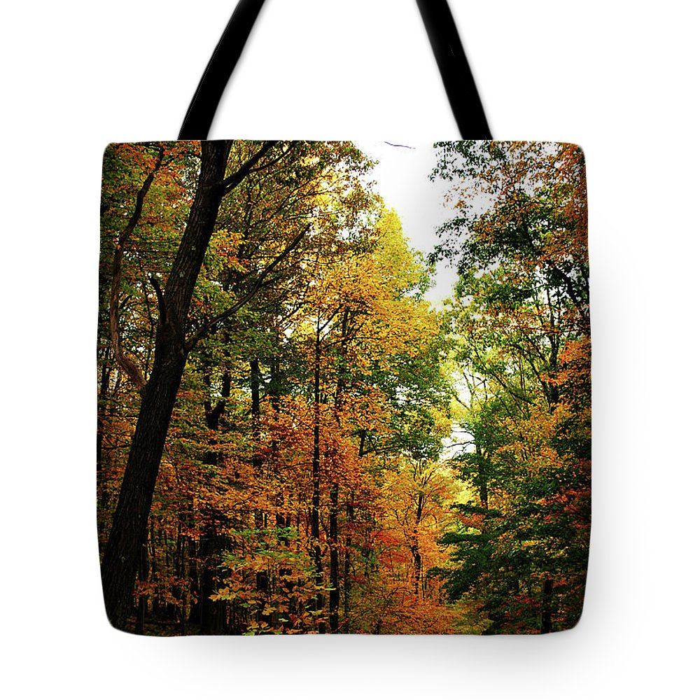 Autumn Tote Bag featuring the photograph Autumn Path by Lori Tambakis