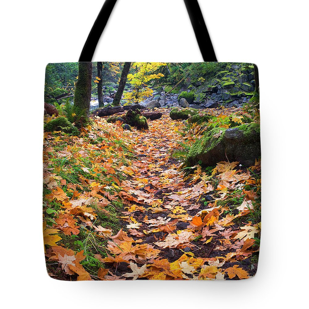 Path Tote Bag featuring the photograph Autumn Path by Mike Dawson