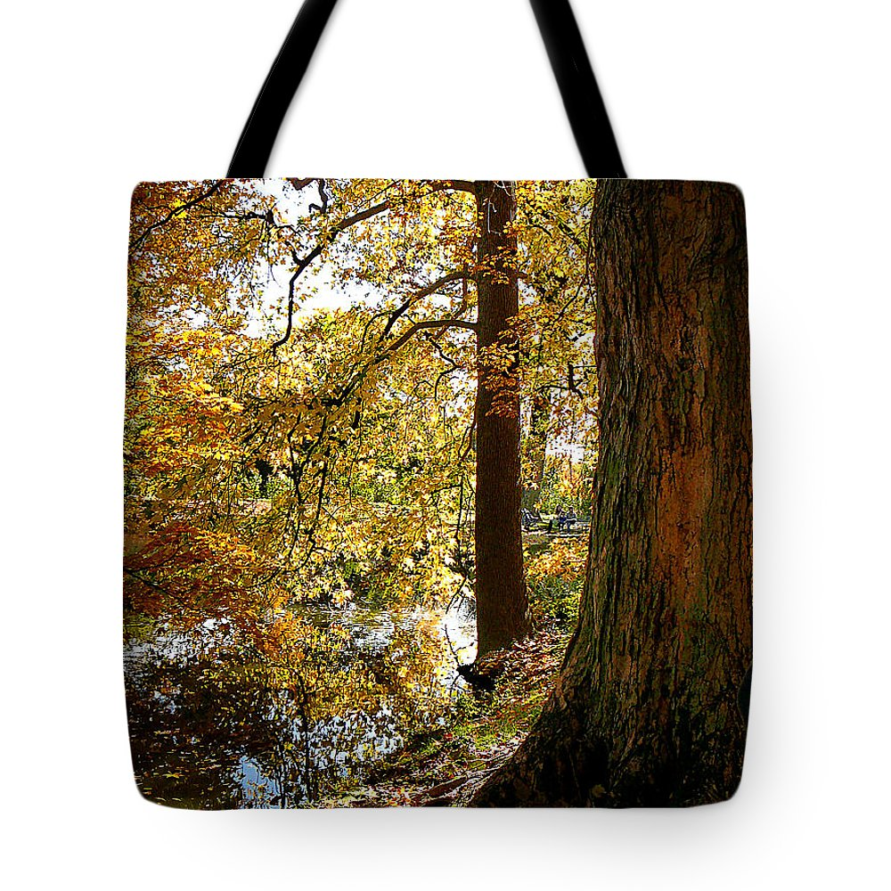 Autumn Tote Bag featuring the photograph Autumn Perspective by Susan Savad