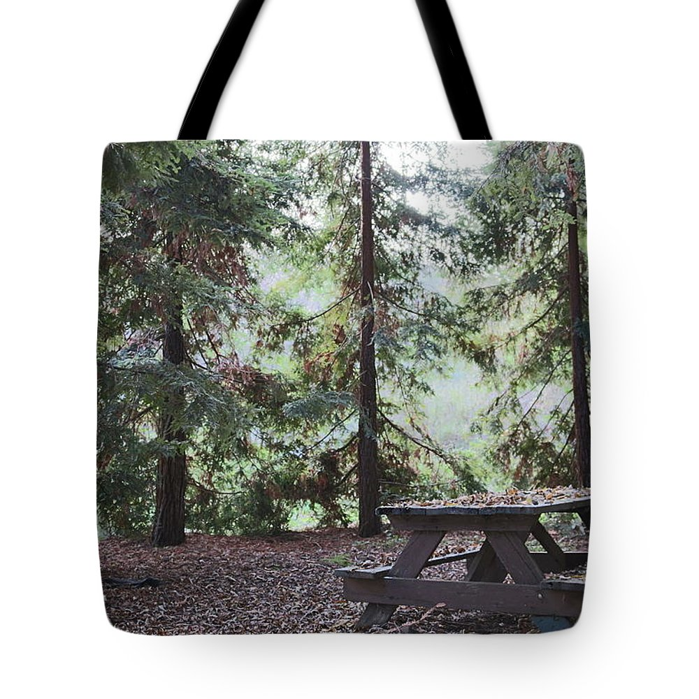 Woods Tote Bag featuring the photograph Autumn Picnic In The Woods by Christy Pooschke